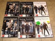Being Human - Seasons 1-4 DVD (8 discs) Set Collection - VGC