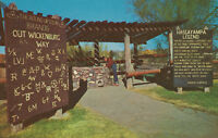 Chrome Postcard A745 Hassayampa Well Wickenburg Arizona AZ Carlos Elmer