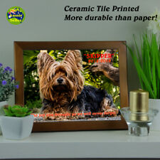 Pet Memorial Framed Photo Plaque. Personalised. Your Photo & Script.