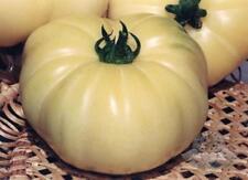 Tomato Seeds White giant Ukraine Heirloom Vegetable Seeds