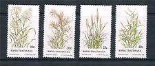 Bophuthatswana 1984 Indigenous Grasses 2nd SG 116/9 MNH