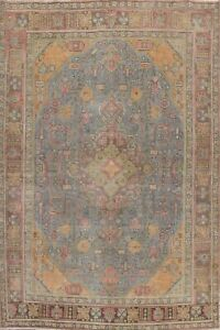 Geometric Traditional Hand-knotted Area Rug Evenly Low Pile Oriental Carpet 8x11