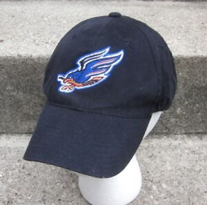 FRESNO FALCONS beat-up ECHL defunct hockey cap 2000s lrg snapback hat West Coast