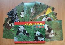 10 Pieces Giant Panda Postcards