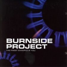 DAMAGED ARTWORK CD Burnside Project: Finest Example Is You