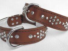 LEDER HALSBAND - Hundehalsband, NIETEN Braun, Halsumfang 52-66cm, NEU (5-5-6-56)