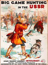 Coon Raccoon Hunting Motivational Poster Art Lights Walker Bluetick Dogs MVP433