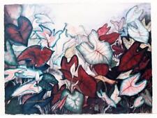 Original JANICE C SUMLER listed artist Floral Plants Flowers SIGNED LITHO #356T