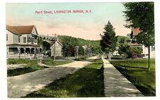Livingston Manor NY - HOUSE ON PEARL STREET- Handcolored Postcard