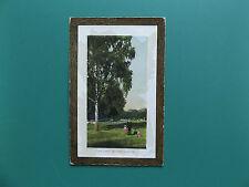 VINTAGE POSTCARD THE PARK ROUKEN GLEN RENFREWSHIRE SCOTLAND GB UK