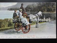 An Irish JAUNTING CAR c1903 by Valentine 531