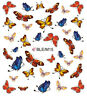 Tropical Butterflies Water Transfers Nail Art Stickers Decals Tips Decoration
