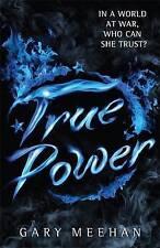 True Power: Book 2 by Gary Meehan (Paperback, 2015)