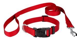Personalized Collar and Dog Leash Set, Variety of Colors, Embroidered Pet ID