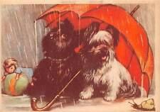 Norfolk? Terrier Puppies Dogs, umbrella rain, doll, ball, toys, snail