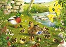 The House Of Puzzles - 500 BIG PIECE JIGSAW PUZZLE - Ducks To Water Big Pieces