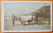 Basque Wood Cart with Oxen Victorian CDV Photo Nice Retailer c1880