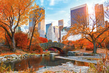 NEW YORK - CENTRAL PARK IN AUTUMN POSTER - 24x36 NYC CITY 34043