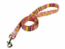 "Pink Stripes With Paisley Lead - 72"" Long x 3/4"" Wide"