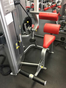 Cybex VR3 Back Extensions Selectorized