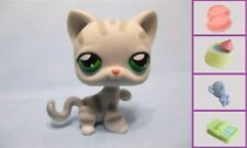 Littlest Pet Shop Cat Kitten Stripes Paw Up 32 and Free Accessory Authentic Lps