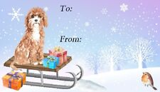Cavapoo (Brown) Dog Christmas Labels By Starprint - 42 Peel Off Labels
