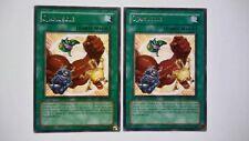 Lot 2 Cartes Yu Gi Oh Ojamuscle DP2-FR021 RARE