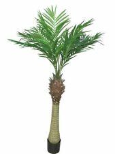 Artificial areca Palm Maui/oro fruto en Palme olla h:170cm arte palme/- árbol decorativas