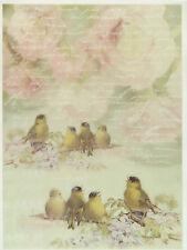 Printed Translucent / Vellum Scrapbook  Paper A/4 Birds