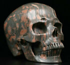 """Huge 5.10"""" Magpie Stone Carved Crystal Skull, Realistic, Crystal Healing"""