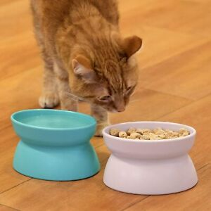 Kitty City Raised Cat Food Bowl Collection Stress Free Pet Feeder and Waterer