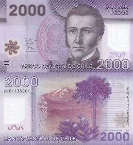 Chile 2000 Pesos (2013) - Nalcas National Reserve/Polymer p162c UNC