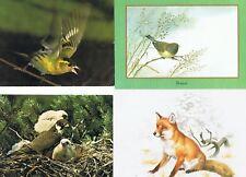 Lot de cartes postales d'animaux