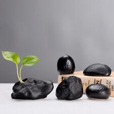 Ceramic Mini Black Zen Vase Decor Hydroponic Flower Planter Home Table Ornaments
