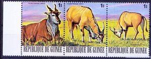 Eland Antelope, Guinea 1977 MNH Strip No Gum, Wild Animals