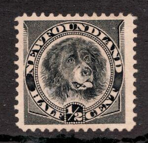 #58 - Newfoundlander Dog - ½ Cent - 1894 - MH - Superfleas - est$40