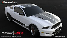 Raceskinz® 2013-4 Ford Mustang Stripe Kit RS50 D3NIAL(TM) Edition