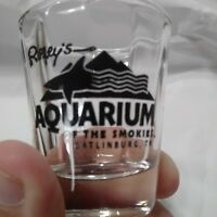 Ripley's  Aquarium Of The Smokies Shark Shot Glass Souvenir Gatlinburg Tennessee