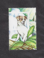Dog Art Full Body Study Postage Stamp Jack Russell Terrier Guyana Jungle Mnh