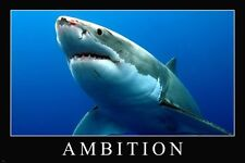 GREAT WHITE SHARK ambition motivational poster 24X36 PERSISTENCE empowering