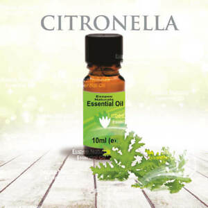 Citronella Essential Oil 10ml - 100% Pure - For Aromatherapy & Home Fragrance