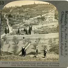 CAMEL CARAVAN ON ROAD BETWEEN JERICO & JERUSALEM NEAR APOSTLES SPRING STEREOVIEW