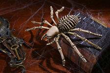 "9"" Spider Skeleton Black Widow Bug Scary Halloween Haunted House Decor Prop"