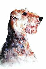 AIREDALE TERRIER #1 Dog  ART  ACEO Card Print by A Borcuk