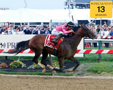 WAR OF WILL 2019 PREAKNESS STAKES WINNER HORSE RACING 8X10 PHOTO