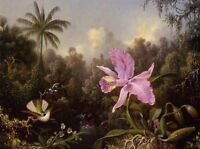 """Oil painting Martin Johnson Heade - Orchid and Two Hummingburds nice birds 36"""""""
