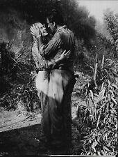 Grace Kelly Stewart Granger in Green Fire Lot of 3 Movie Press Photos