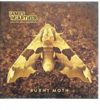 James McArthur And The Head Gardeners - Burnt Moth - great modern folk album