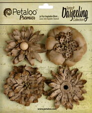 CRAFT BROWN 4 Wild Blossoms Pack DAISIES 55-60cm Darjeeling Petaloo Ver