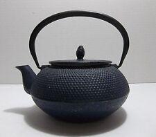 Vintage Japanese Cast Iron TEA POT Infuser NAVY BLUE